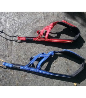 ARNES CANICROSS CORDON AMARILLO AZUL L-XL 27 A 29KG MUSHING